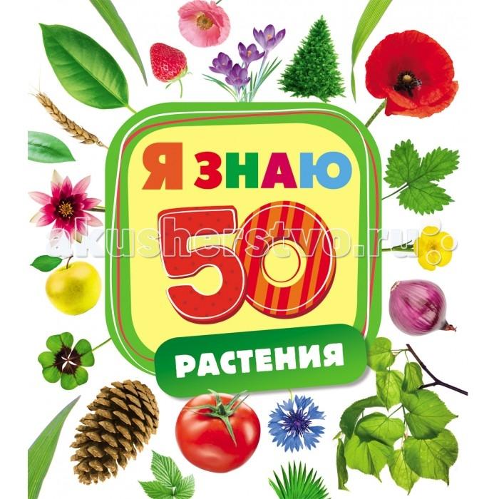 Обучающие книги Росмэн Книжка Растения
