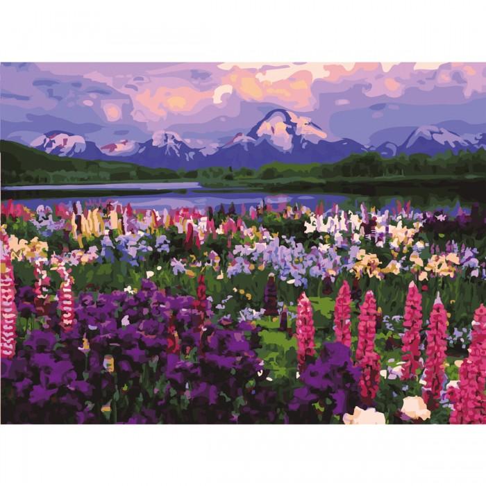 Остров Сокровищ Картина по номерам Горный пейзаж 40х50 см