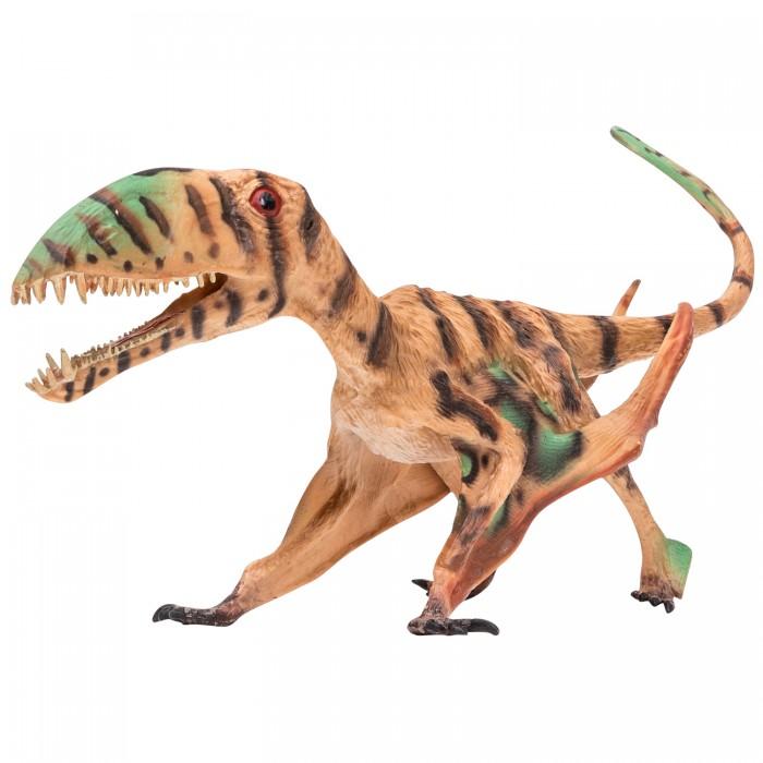 Купить Игровые фигурки, Masai Mara Игрушка Мир динозавров Птерозавр 35 см