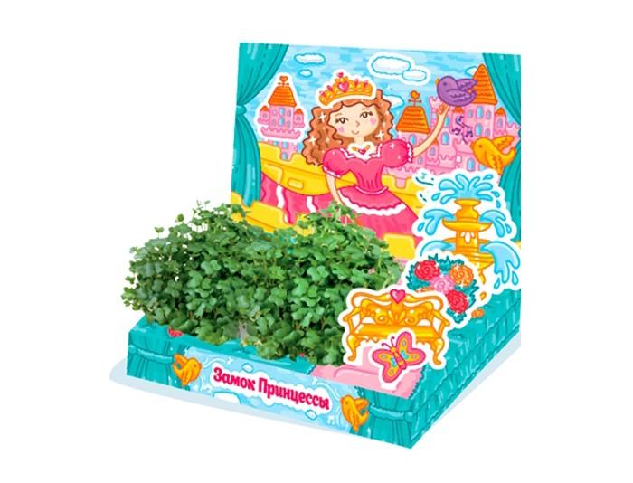 Наборы для выращивания Happy Plant Детский набор для выращивания Замок принцессы наборы для выращивания happy plant детский набор для выращивания зоопарк