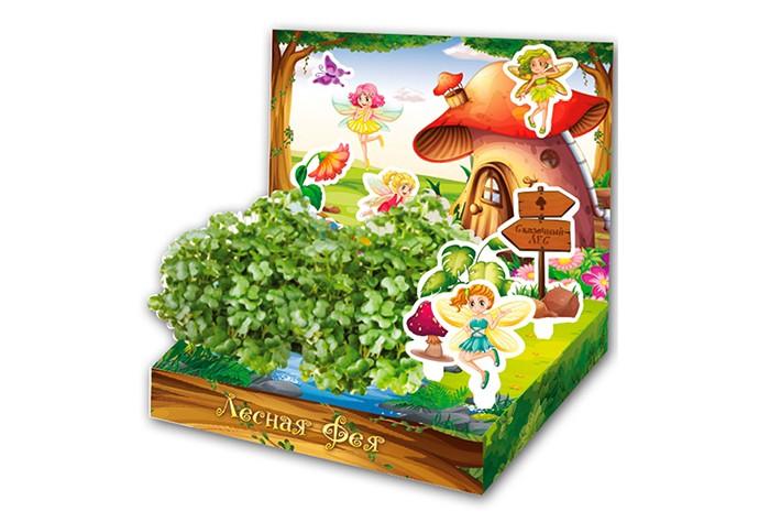 Наборы для выращивания Happy Plant Детский набор для выращивания Лесная Фея наборы для выращивания happy plant детский набор для выращивания зоопарк