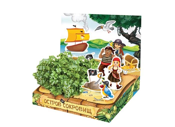 Наборы для выращивания Happy Plant Детский набор для выращивания Остров сокровищ наборы для выращивания happy plant детский набор для выращивания зоопарк