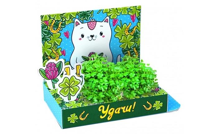 Наборы для выращивания Happy Plant Живая открытка Удачи наборы для выращивания растений happy plants подарочный набор снеговик удачи в новом году