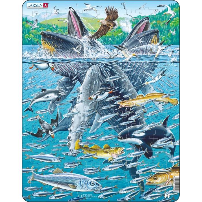 Картинка для Larsen Пазл Горбатые киты в стае сельди 140 элементов