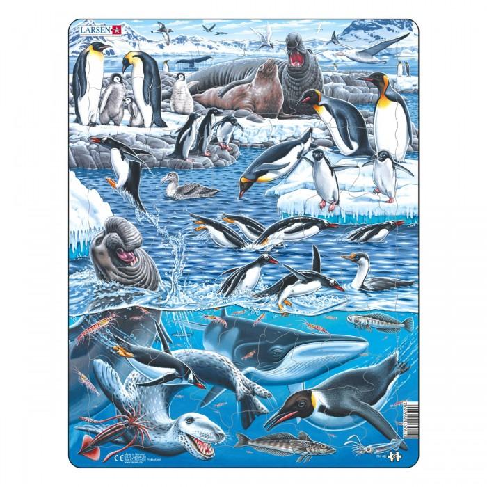 Картинка для Larsen Пазл Животный мир Антарктики