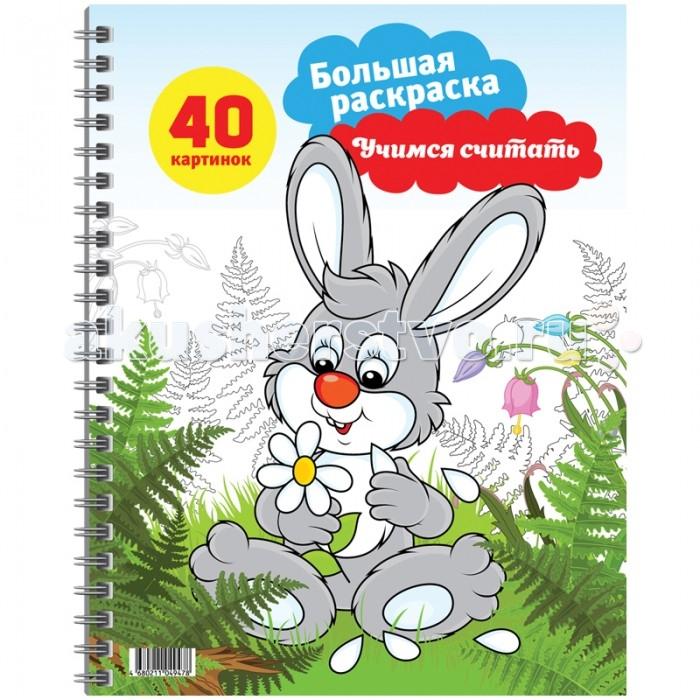 Раскраски Спейс Большая А4 на гребне Учимся считать 40 страниц раскраски спейс большая а4 весёлая техника 80 страниц склейка