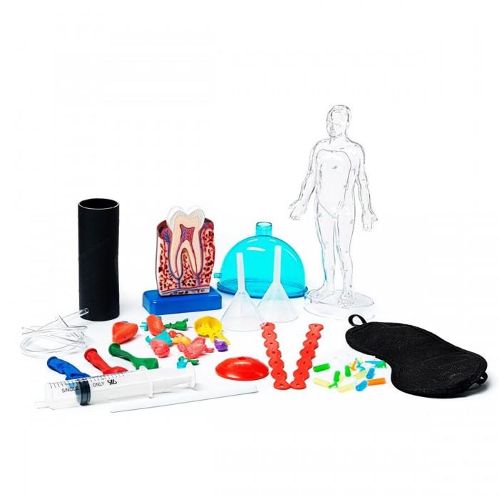 Купить Наборы для опытов и экспериментов, Bondibon Французские опыты Науки с Буки (8 экспериментов) Секреты человеческого тела