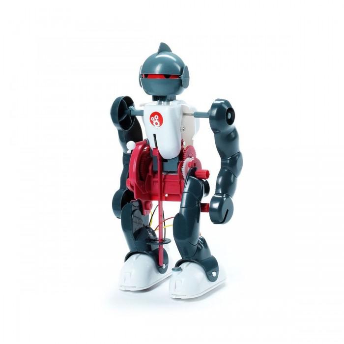 Наборы для творчества Bondibon Французские опыты Науки с Буки Юный вундеркинд Робот-акробат bondibon развивающая игра французские опыты науки с буки юный вундеркинд робот акробат с 6 лет