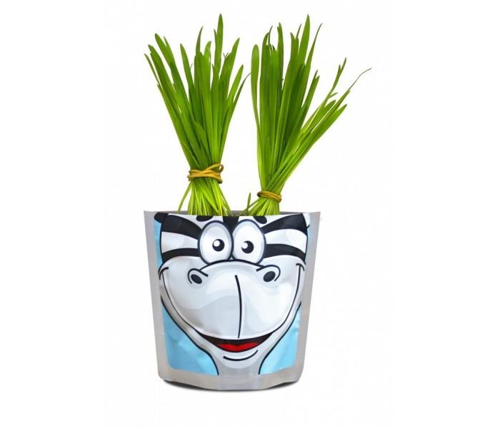 Наборы для выращивания Happy Plant Набор для выращивания Зебра наборы для выращивания happy plant детский набор для выращивания зоопарк