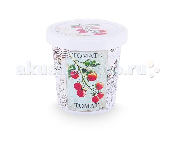 Наборы для выращивания Rostokvisa Набор для выращивания Томат наборы для выращивания растений rostokvisa набор для выращивания петрушка