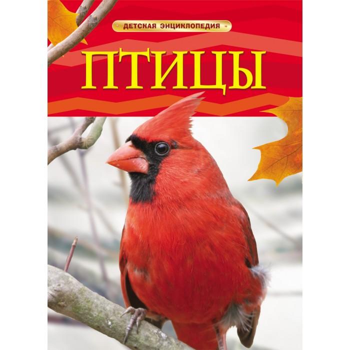 Энциклопедии Росмэн Энциклопедия Птицы как птицы козлёнка спасли
