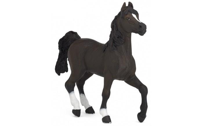 Игровые фигурки Papo Игровая реалистичная фигурка Арабский конь