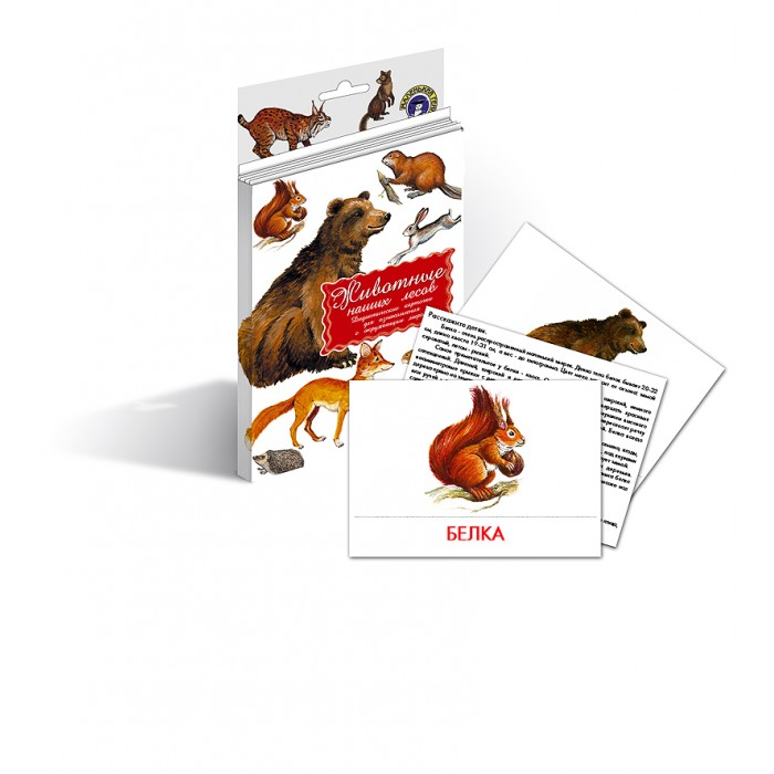 Раннее развитие Маленький гений Дидактические карточки Животные наших лесов