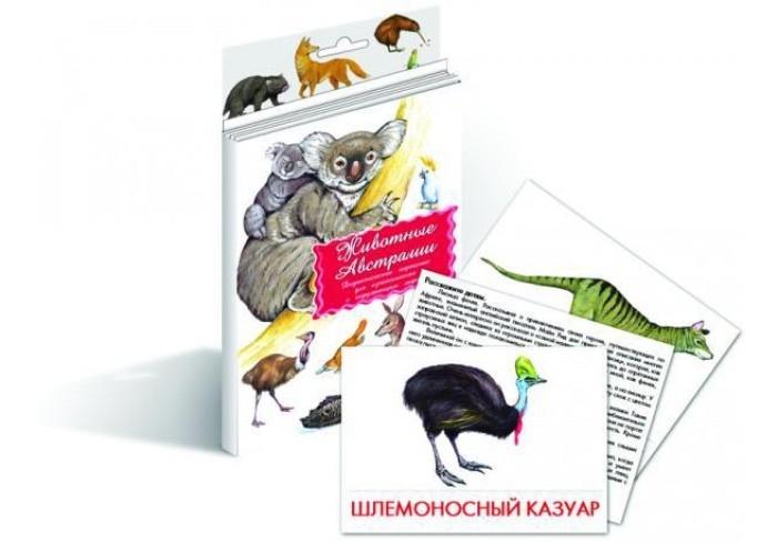 Раннее развитие Маленький гений Дидактические карточки Животные Австралии дидактические карточки животные азии