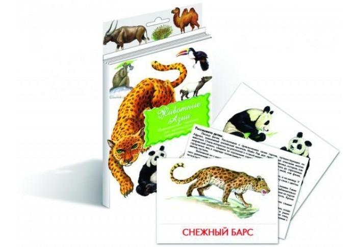 Раннее развитие Маленький гений Дидактические карточки Животные Азии