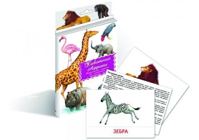 Раннее развитие Маленький гений Дидактические карточки Животные Африки