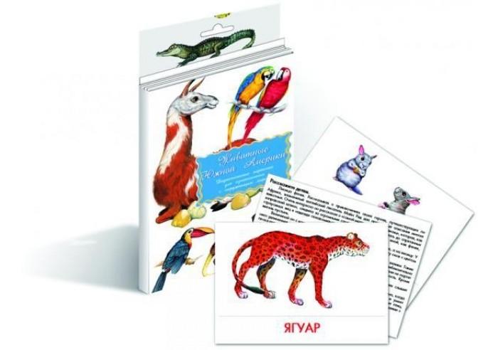 Раннее развитие Маленький гений Дидактические карточки Животные Южной Америки дидактические карточки животные азии