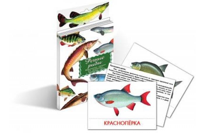 Маленький гений Дидактические карточки Речные рыбы