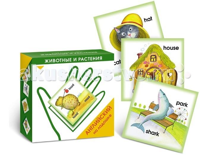 Маленький гений Карточки Английский на ладошке Животные и растения
