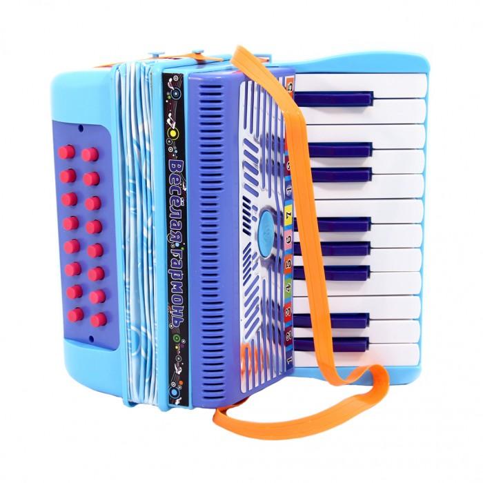 Музыкальные игрушки Veld CO Аккордеон 24634