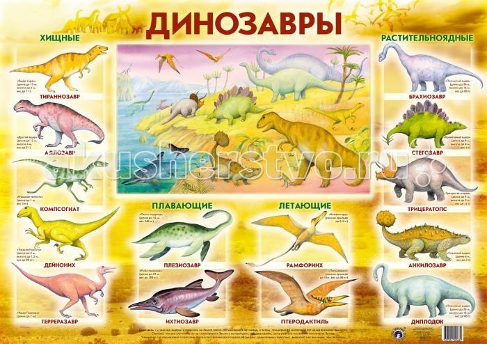 Обучающие плакаты Маленький гений Плакат Динозавры обучающие плакаты маленький гений плакат калейдоскоп эмоций