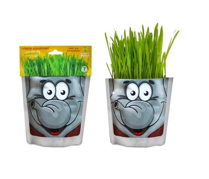 Наборы для выращивания Happy Plant Набор для выращивания Слон наборы для выращивания растений вырасти дерево набор для выращивания ель канадская голубая