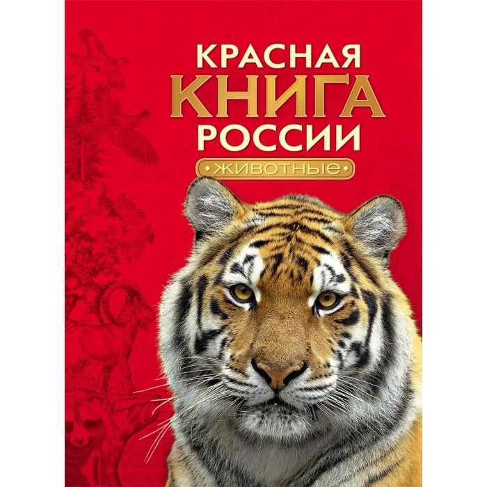 Энциклопедии Росмэн Красная книга России Животные книги издательство сзкэо биэ животные россии