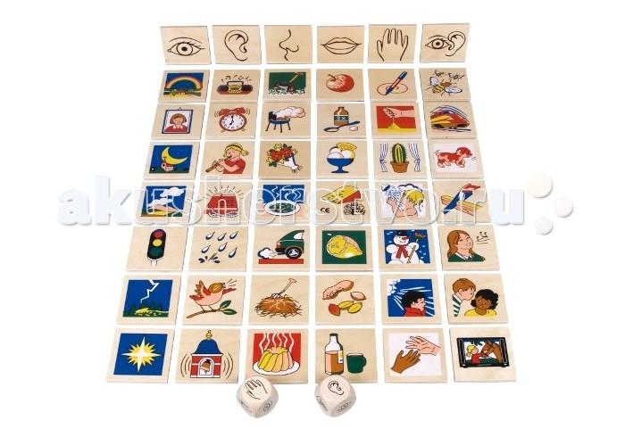 Деревянная игрушка Beleduc Развивающая игра Наши 5 чувствРазвивающая игра Наши 5 чувствBeleduc Развивающая игра Наши 5 чувств для малышей.   Игра развивает мышление, координацию движений, коммуникативные навыки и моторику ребенка. В эту игру можно играть по-разному: как в лото, меморину (логическую игру на запоминание) или просто бросая кубик.   Развивающая игра включает 51 деталь: 1 деревянную коробку с крышкой (194 х 148 х 89 мм), 48 деревянных карточек, 2 кубика с символами.<br>