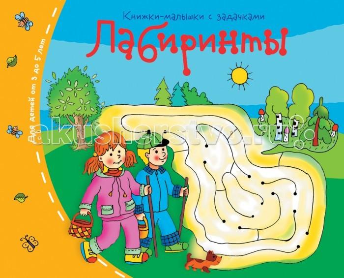 Раннее развитие Айрис-пресс Книжки-малышки. Лабиринты раннее развитие айрис пресс книжки малышки головоломки