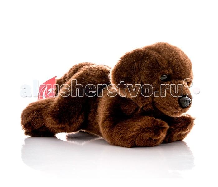 Мягкие игрушки Aurora Шоколадный лабрадор 28 см aurora мягкая игрушка тигр 28 см