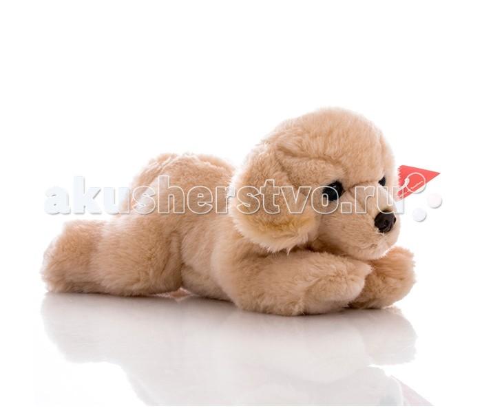 Мягкие игрушки Aurora Палевый лабрадор 28 см