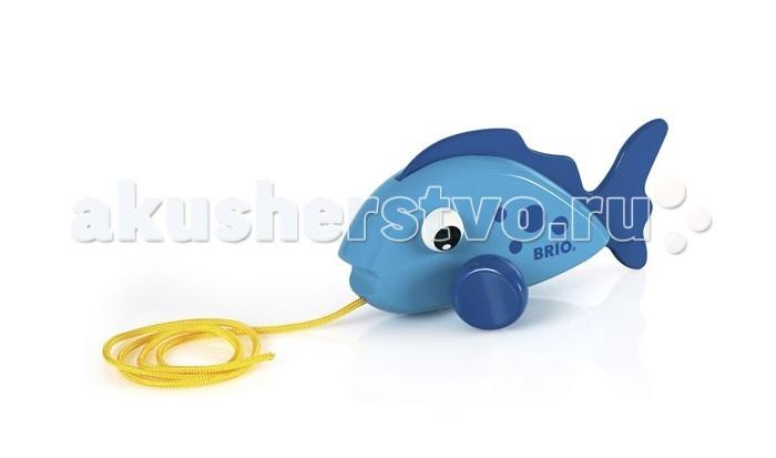 Каталка-игрушка Brio Рыбка на веревочке