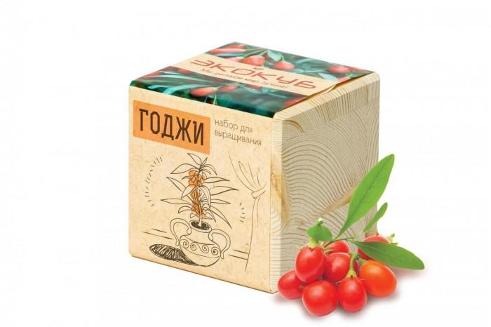 Наборы для выращивания Экокуб Набор для выращивания Годжи купить ягоды годжи в магазине