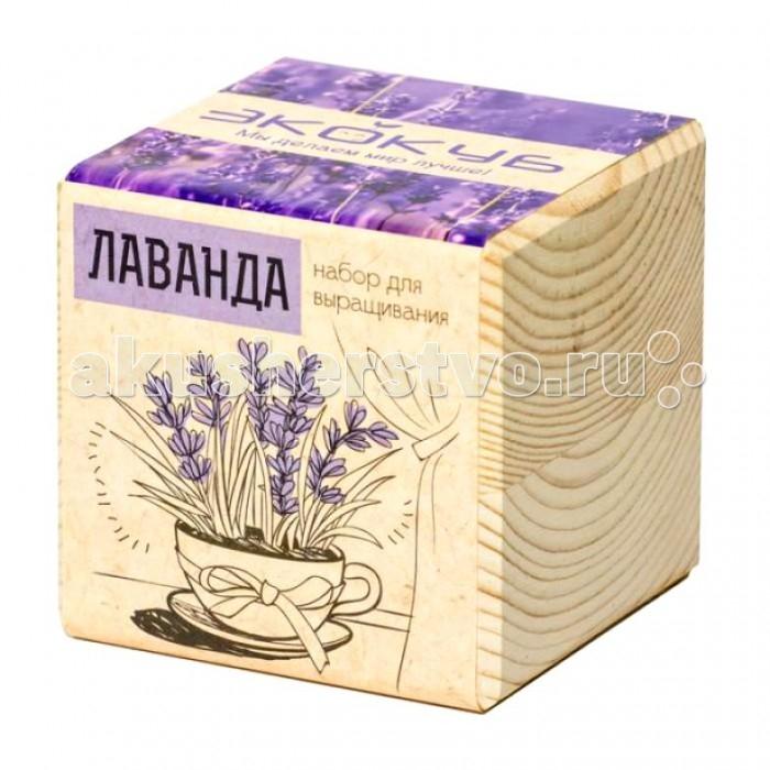 Наборы для выращивания Экокуб Набор для выращивания Лаванда набор с семенами для выращивания лаванда