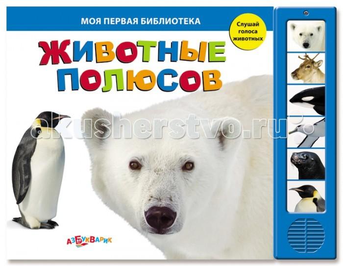 Обучающие книги Азбукварик Животные полюсов азбукварик книга с 5 кнопками