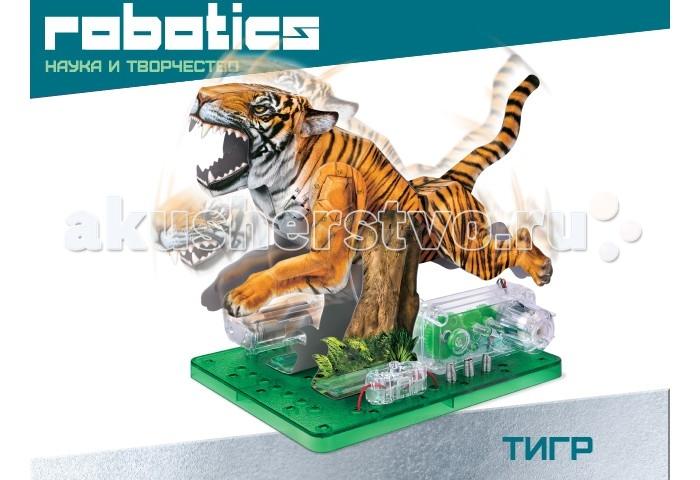 Amazing Научный опыт Тигр на батарейках