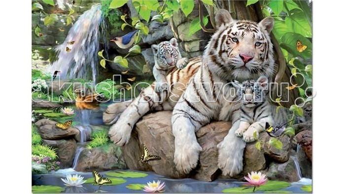 Пазлы Educa Пазл Белые Бенгальские Тигры 1000 элементов