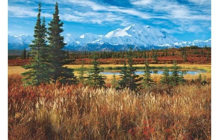 Пазлы Educa Пазл Национальный парк Денали США 1500 элементов