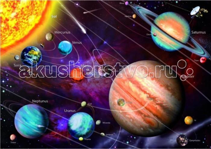 Пазлы Educa Пазл Солнечная система с неоновым свечением 1000 элементов пазлы educa пазл леди в голубом кетто 1000 элементов