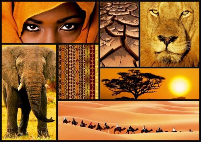 Пазлы Educa Пазл Цвета Африки 1000 элементов пазлы educa пазл леди в голубом кетто 1000 элементов