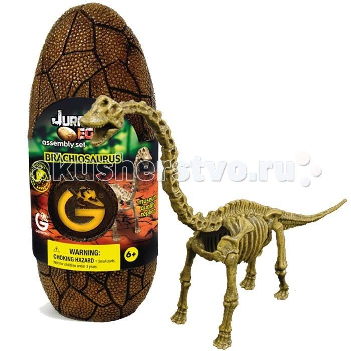 Конструкторы Geoworld Сборная модель динозавра в яйце Jurassic eggs - Брахиозавр 14 деталей конструкторы eastcolight сборная модель science time скелет трицератопса 14 элементов