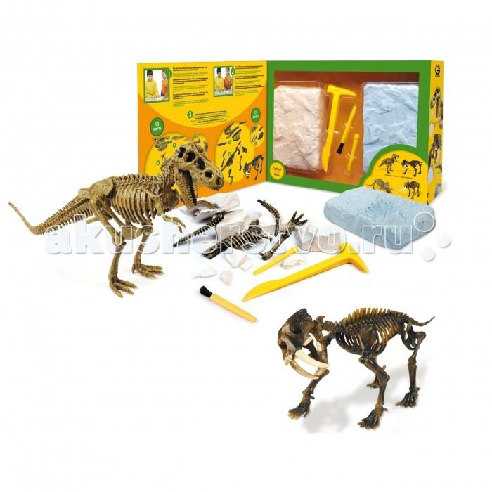 Geoworld Двойной набор палеонтолога Т-Рекс и саблезубый тигр