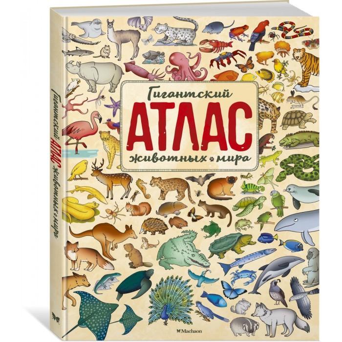 Картинка для Махаон Гигантский атлас животных мира