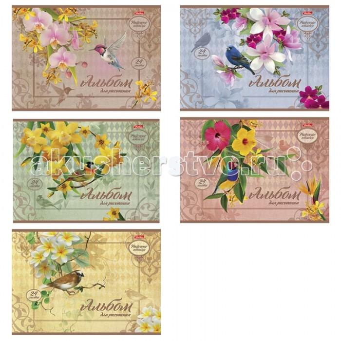 Принадлежности для рисования Hatber Альбом для рисования 24 листов Райские птички the art of kentaro nishino зайчики лицензия альбомы для рисования гребень 40 листов