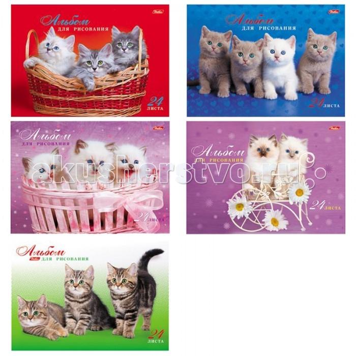Принадлежности для рисования Hatber Альбом для рисования 24 листов Милые котята the art of kentaro nishino зайчики лицензия альбомы для рисования гребень 40 листов