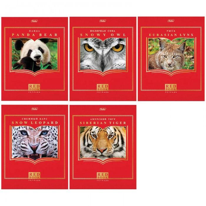 Тетради Hatber Тетрадь Красная книга А5 (48 листов) тетради канц эксмо темно красная а5 200листов тетради с пластиковой обложкой