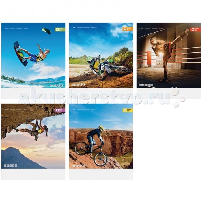 Тетради Спейс Тетрадь А5 клетка Спорт Sport box выб УФ-лак (48 листов) делай 100 листов а5