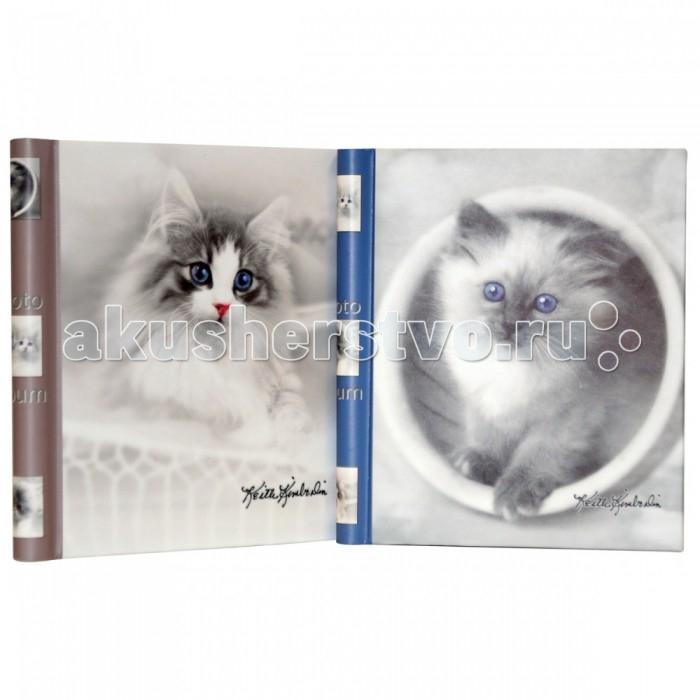 Фотоальбомы и рамки Veld CO Фотоальбом магнитный K.Kimberlin: Котята 20 листов британские котята в кривом роге