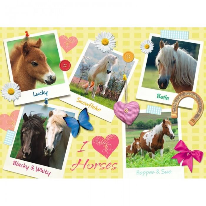 Пазлы Ravensburger Пазл Мои любимые лошади XXL 300 элементов пазлы ravensburger пазл волшебный книжный шкаф xxl 18000 элементов