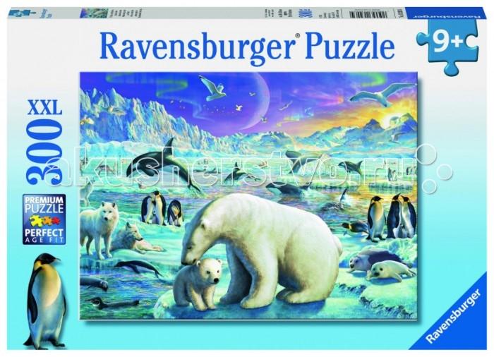 Пазлы Ravensburger Пазл Полярные животные XXL 300 элементов пазлы русский стиль макси пазлы африканские животные
